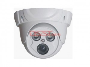 1/3 Sony 420TVL And 700TVL IR Dome Camera Built in Fixed 4m Lens 2pcs Array LED 30Meter IR Distance